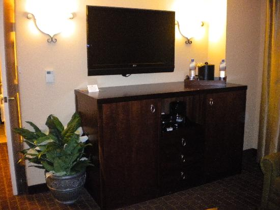 The Plaza Suites Silicon Valley: living room console