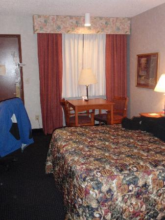 Super 8 by Wyndham Albany: Bed towards Door
