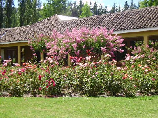 Colbun, Şili: Jardines