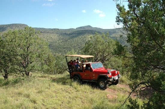 Harvard Lodge at Sproul Ranch: Jeep Tours