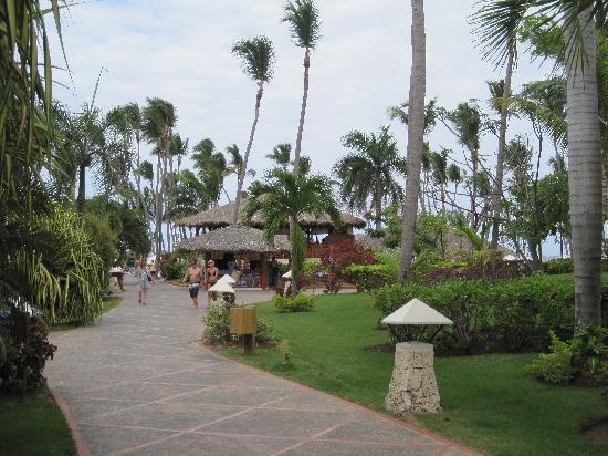 Natura Park Beach - EcoResort & Spa: sentier