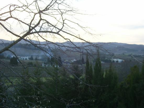 B & B in Limoux at Domaine St George: view from our room