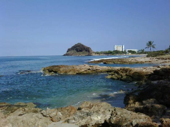 Makaha Beach Cabanas: More from my backyard while walking my dog
