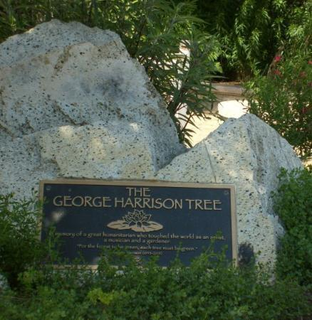 West Hollywood, CA: Griffith Observatory Hollywood. George Harrison ( The Beatles)  planted a  TREE.