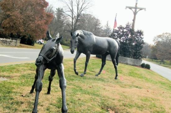 Bellevue, TN: Horse statues in Bel meade
