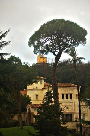 Vatican Gardens : vatican