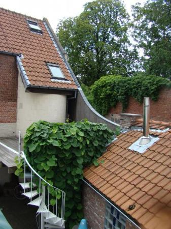 Absoluut Verhulst: The view from our B&B window