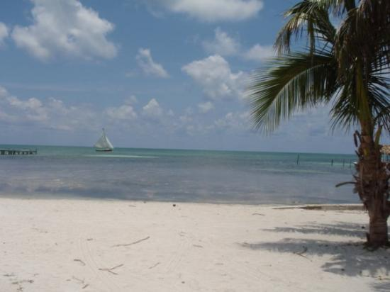 Caye Caulker, Belize: the perfect spot we love the beach