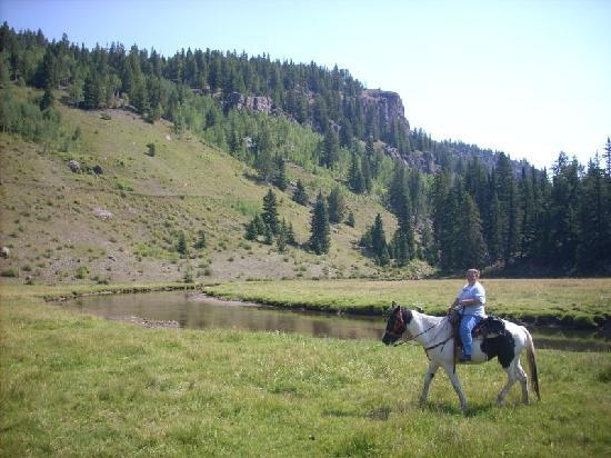 Rainbow Trout Ranch: waterfallride