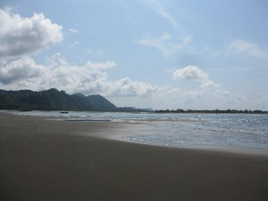 Hotel Villas Gaia: Playa Tortuga