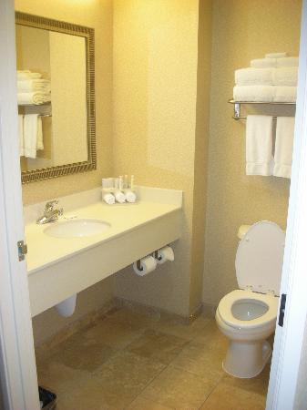 Holiday Inn Express Hotel & Suites Sumner: Clean bathroom...shower only.
