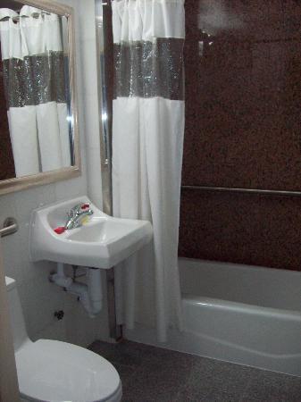 Ramada Jamaica/Queens : Bathroom