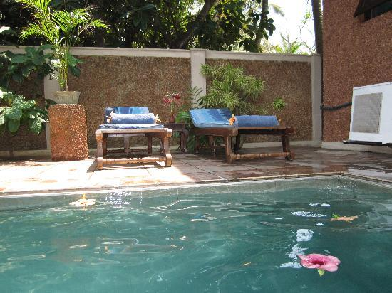 Suite Lanka : Poolbereich
