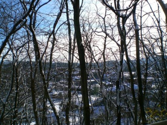 The pretty little town of Elkins in the winter.Can you see through the trees?