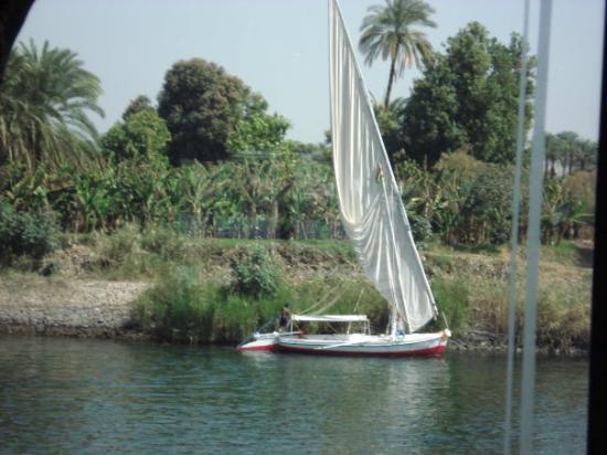 Aswan Botanical Garden ภาพถ่าย