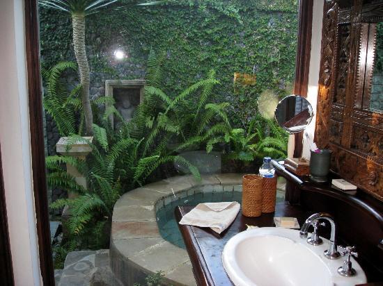 The Damai: baño, ducha y jacuzzzi al aire libre