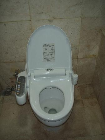 Cool Toilet Picture Of The Dreamland Luxury Villas