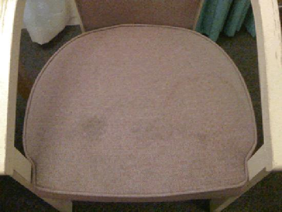 Inn of the Hills Hotel & Conference Center: Mold on the chair