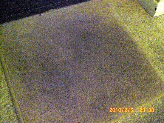 The Swan Motel: carpet 2