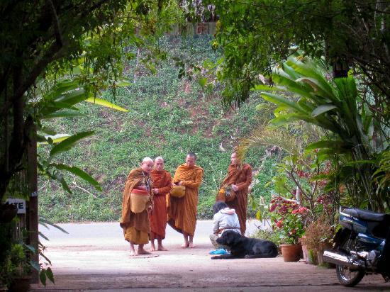 Soppong River Inn: Monks on alms walk