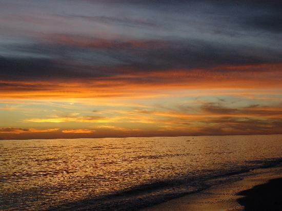 Sea Shells of Sanibel : beautiful sunsets