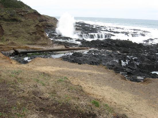Overleaf Lodge & Spa: Near Cape Perpetua visitor center
