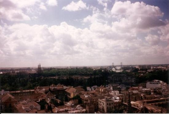 Torre Giralda: south from Giralda Tower, April 1995. Jardines Reales Alcázares, the gardens we visited later