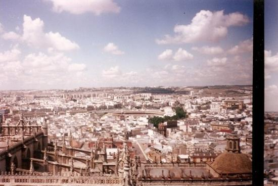 Torre Giralda: looking west from Giralda Tower, Seville. Catedral in the foreground and the Arquitectura civil