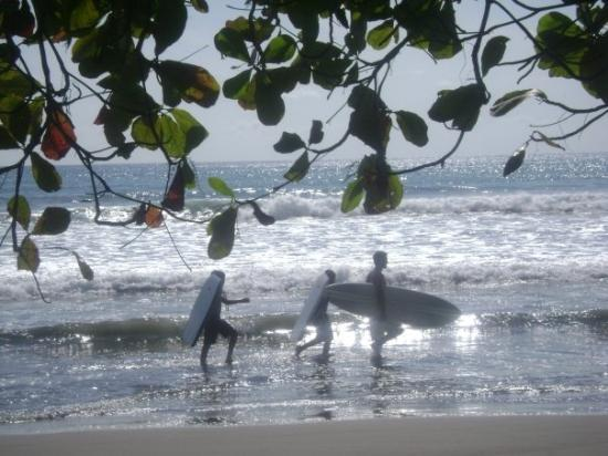 Dominical, Costa Rica: Nick surfing in CR
