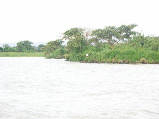 Bahar Dar