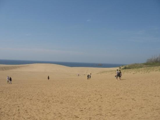雄大で美しい風景に息をのむ - Picture of Tottori Sand Dunes, Tottori ...