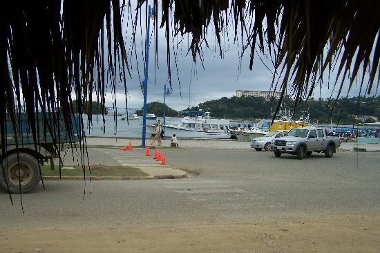 Santa Barbara de Samana, Dominican Republic: VIEW OF THE BAY