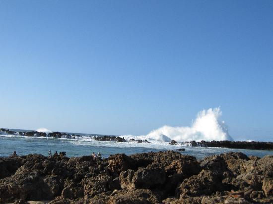 Sharks Cove: spectacular waves