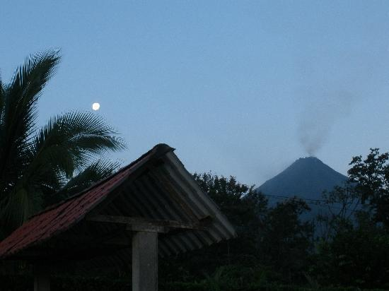 Arenal Green Hotel: Early morning view of volcano at Arenal Green