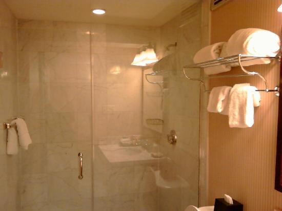 Sheraton Philadelphia University City Hotel : Bathroom