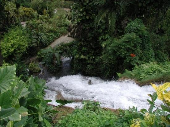 Shaw Park Gardens Falls Ocho Rios Jamaica Picture