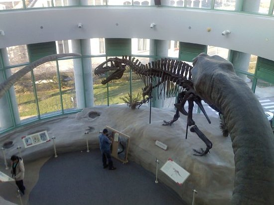 Foto de North Carolina Museum of Natural Sciences