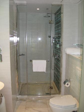Lanson Place Hotel: Bathroom