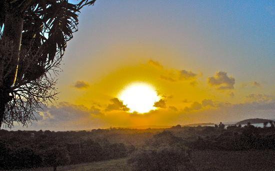 هاسيندا تاماريندو: sunrise, from our porch