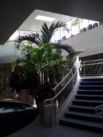 El Tropicano Riverwalk Hotel: 2nd floor