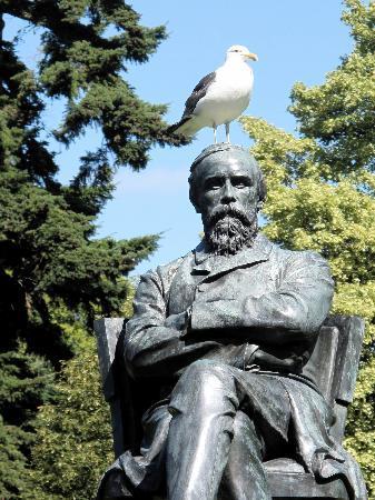Lorenzo Motor Lodge: A cheeky seagull.