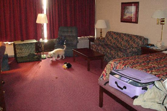 Drury Inn & Suites Fenton-St. Louis: Very nice room