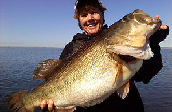 Lakefront Lodge: Huge Falcon Lake bass