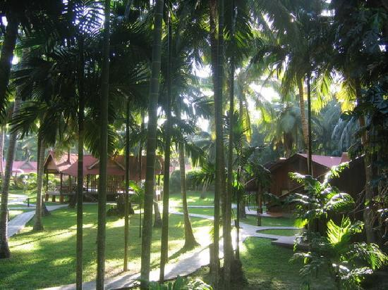 Havelock Island, India: The cottage we stayed in