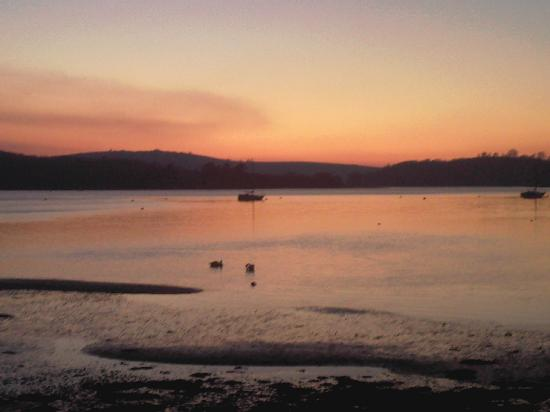 Old Mill Farm: swans basking in the sunset - room view