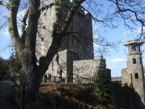Belvedere Lodge: Take a trip to Blarney Castle
