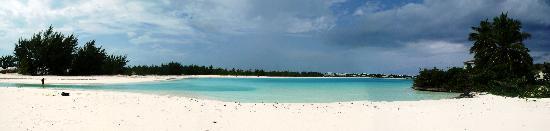 Coral Gardens: 4 season beach