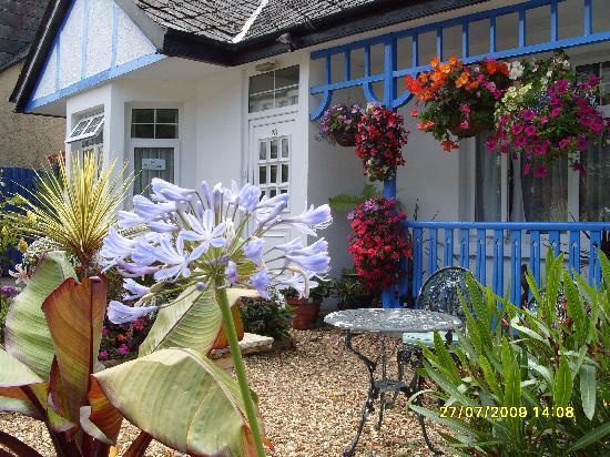 The Beech Tree Guest House: The Beech Tree