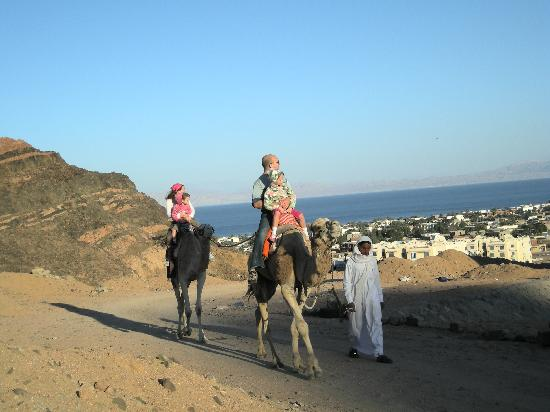 Hike Dahab: Leaving the city behind us