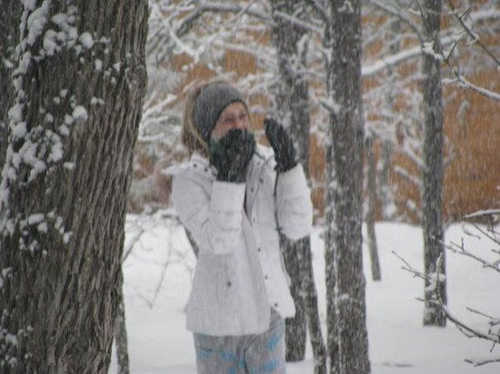 Pinetop-Lakeside, AZ : Chelsea blasted by snow